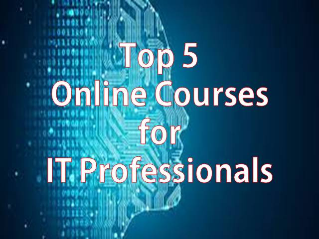 Top 5 Online Courses for IT Professionals