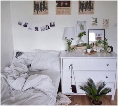 Plus You Will Get To Breathe In Fresh Air The Room Because These Plans Are Natural Purifiers