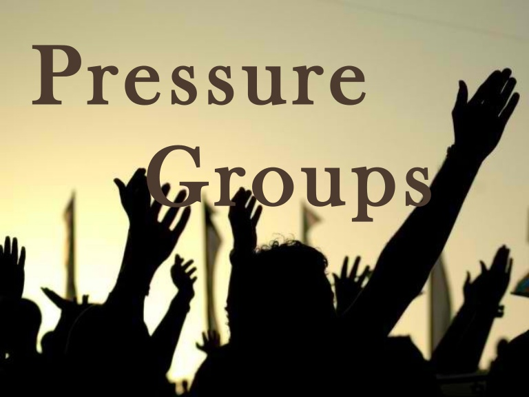 Pressure Groups in India