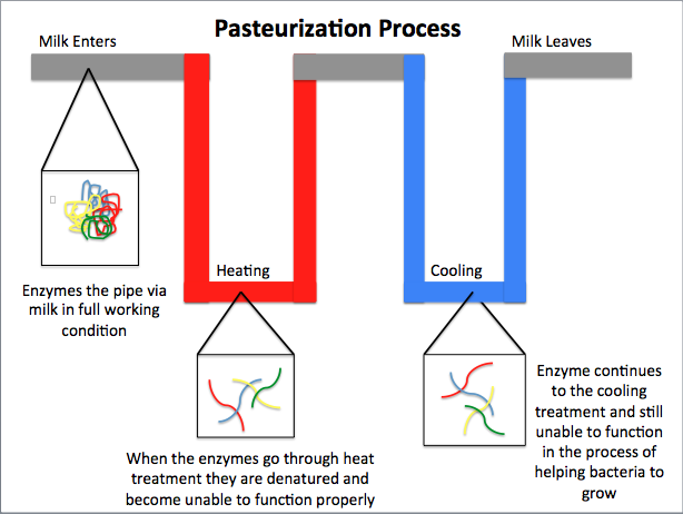 Process of Pasteurisation