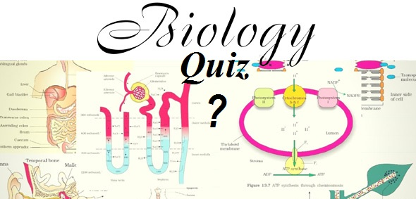 GK Quiz on Science: Biology Set I