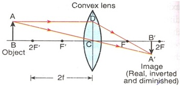 Image 5 of Convex Lens