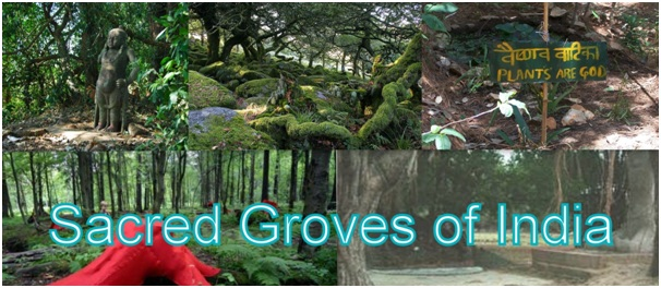 sacred groves in india List of sacred groves of india which is very useful in the preparation of competitive examinations like upsc-prelims, ssc, state services, nda, cds, and.