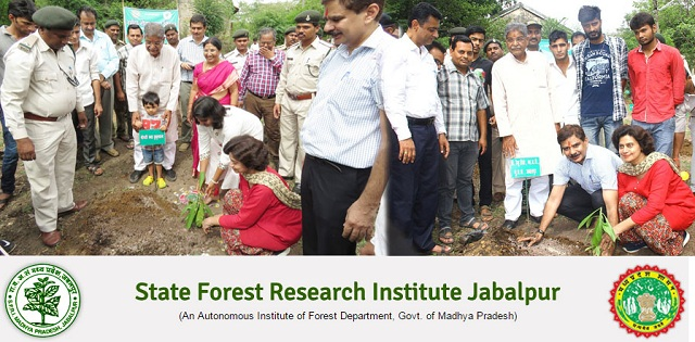 MP State Forest Research Institute