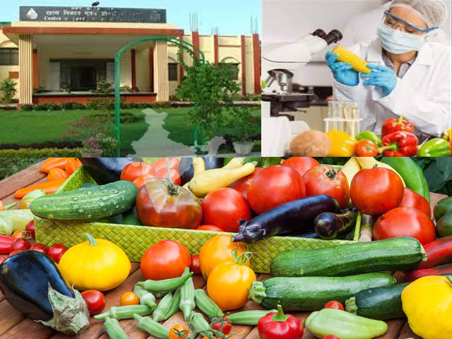 Suitable Courses and Careers for Young Indians in Food Science