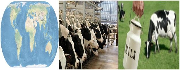 Top 10 Milk Producer