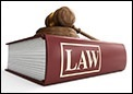 Top 5 Law Specialisations in India