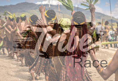 Tribes & Races