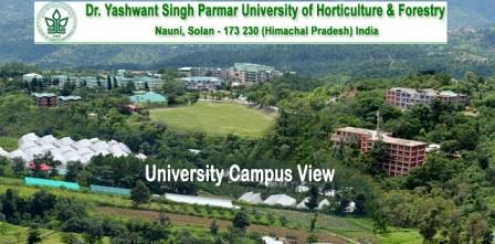 YSP University Recruitment 2018