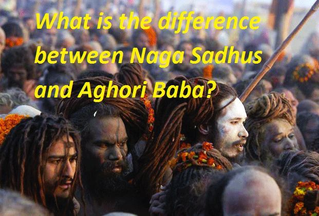 What is the difference between Naga Sadhus and Aghori Baba?