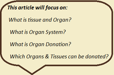 What is Organ