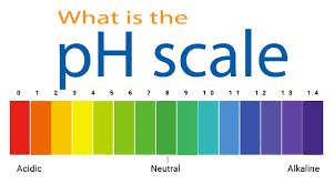 What is pH scale