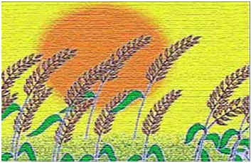Why basant panchmi celebrated