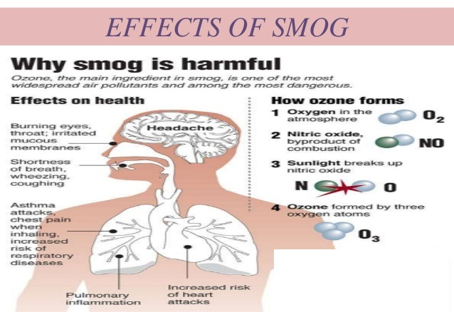 Why smog is harmful for health