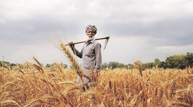 Agriculture Problems in India