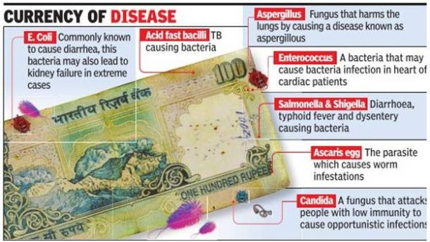 bacteria-on-notes