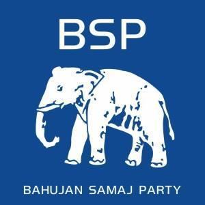 BSP party symbol history