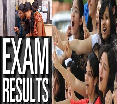 Bihar Board 12th Commerce Result 2013