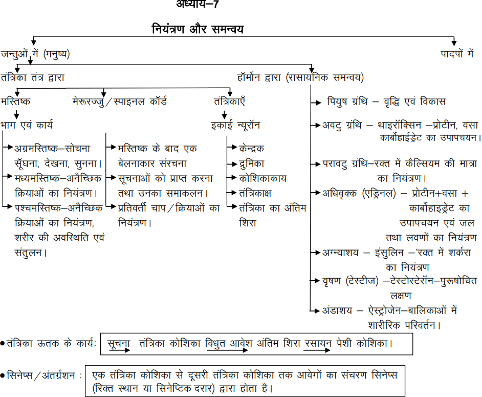 bihar board science revision notes