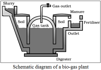 bio gas plant, biogas plant working, diagram of bio gas plant, sources of energy ncert exemplar