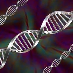 Bioinformatics   Coursera