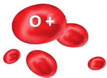 blood group 0