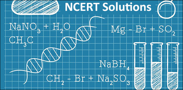 NCERT Solutions For CBSE Class 11 Chapter 3