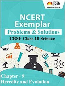 Class 10 NCERT Exemplar Problems, Heredity and Evolution NCERT Exemplar