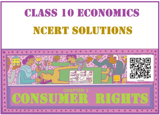 NCERT Solutions for Class 10 Social Science Economics Chapter 5
