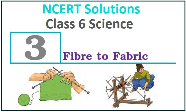 NCERT Solutions For Class 6 Science Chapter 3 Fibre To