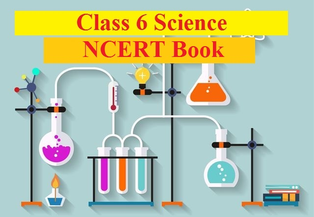NCERT Book for Class 6 Science PDF| Download NCERT Books