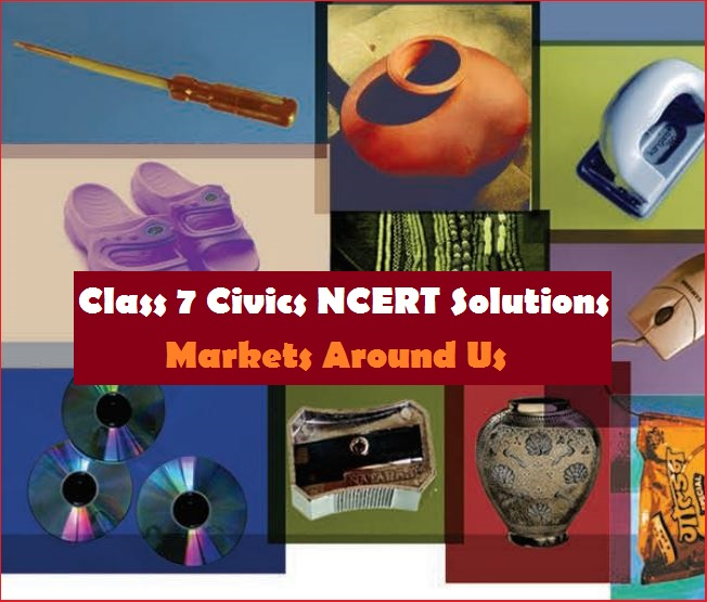 NCERT Solutions for Class 7 Social Science Civics Chapter 7