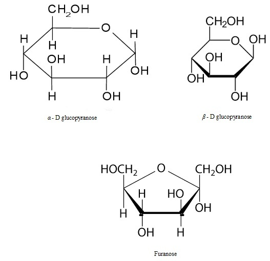 UPSEE Bimolecules Concepts 4