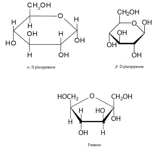 cyclic monosaccharide