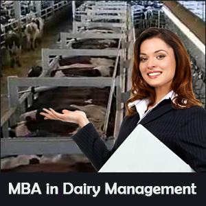 MBA in Dairy Management: Prospects & Career Options
