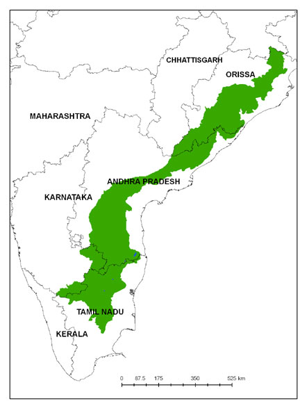 Why do the Western Ghats receive more rain than the ...