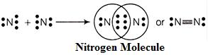 electron dot structure of nitrogen molecule