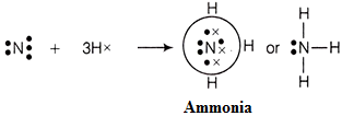 elecrton dot structure of ammonia