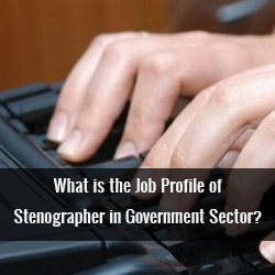 What is the Job Profile of Stenographer in Government Sector?