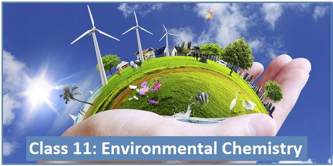Environmental Chemistry: NCERT Solutions