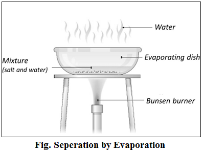 Cbse Class 9 Science Notes For Chapter 2 Part Ii