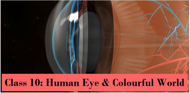 Human Eye and Colourful World: NCERT Solutions