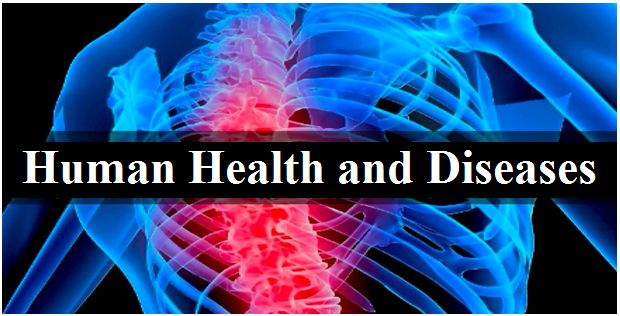 Human Health and Diseases: NCERT Exemplar Solutions