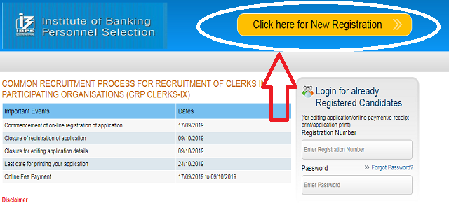 IBPS Clerk Application Process 2019 2