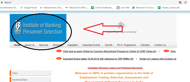 IBPS Clerk Application Process 2019