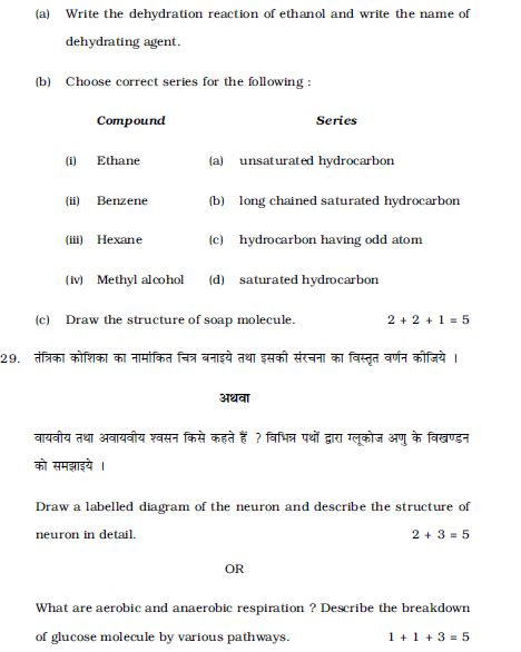 class 10th last five year question papers