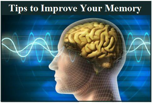 how to improve your brain memory power