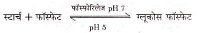 second derivation of quadratic equations