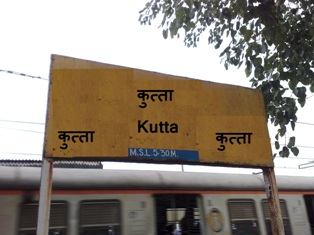 Image result for कुत्ता रेलवे स्टेशन