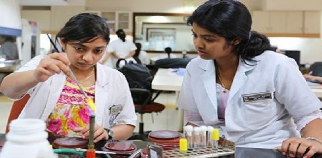 Diu Higher Education Society Laboratory Assistant and Other Posts